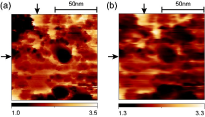 Near-field heat transfer: electromagnetic local density of states vs. thermovoltage data